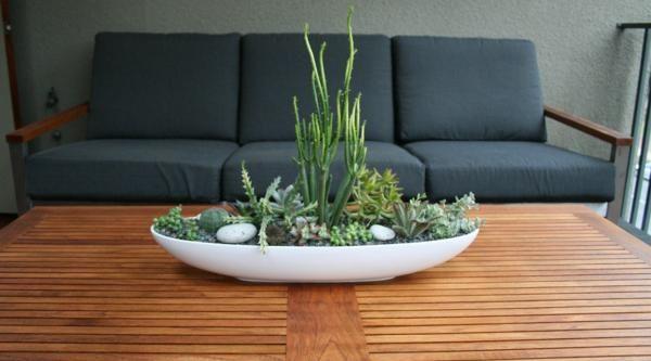 rośliny-w-domu1