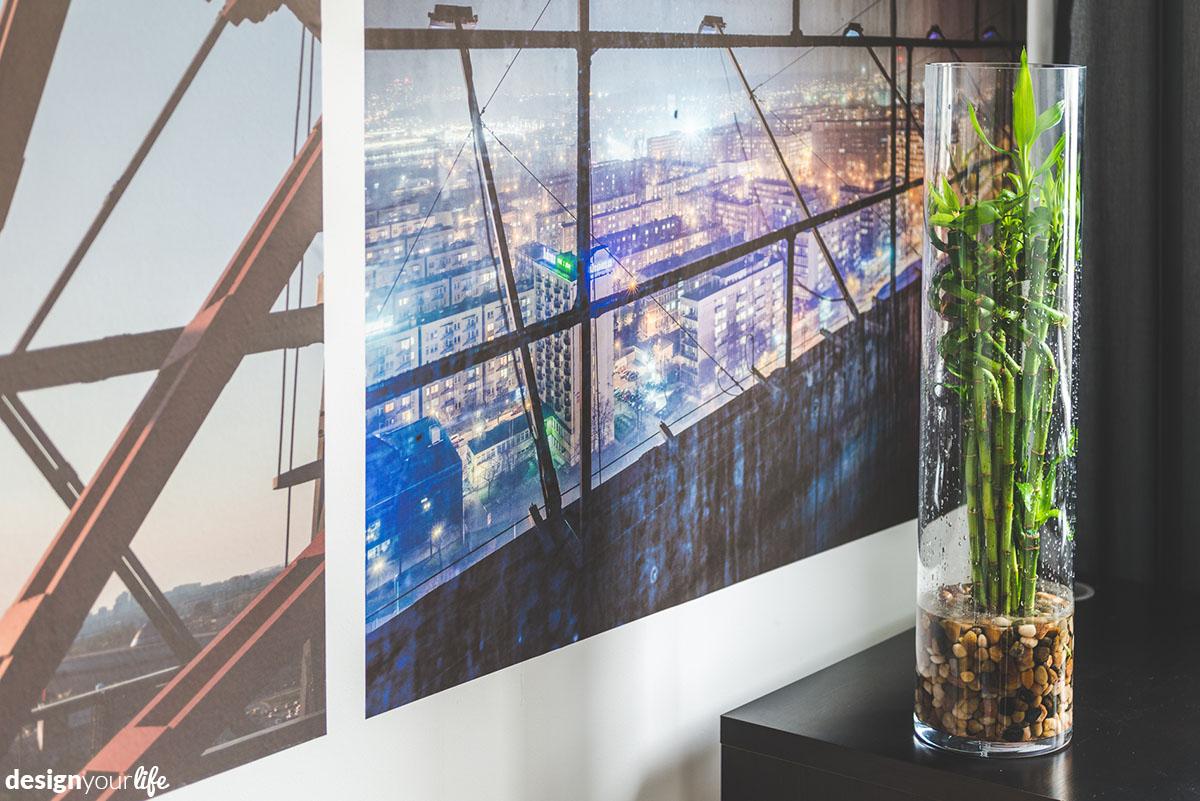 Dekoracja z lucky bamboo - Designyourlife.pl