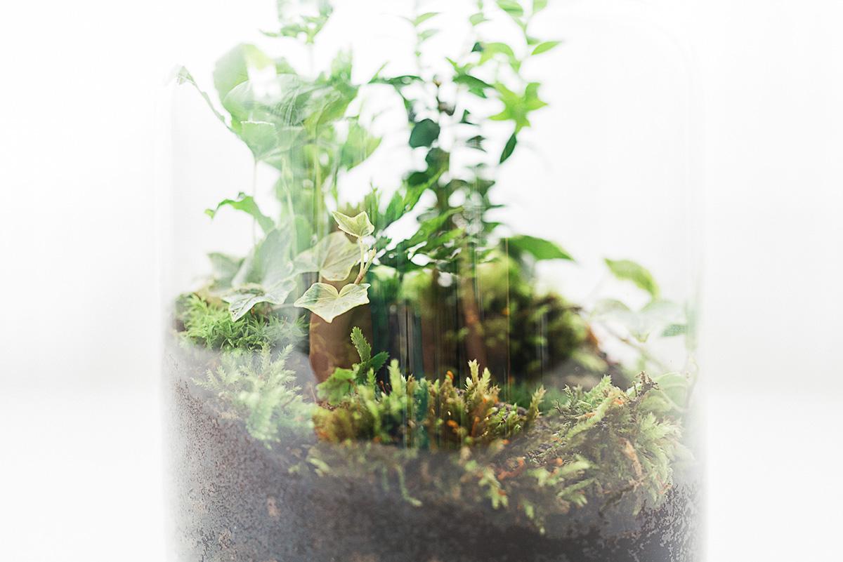 DIY las w słoiku